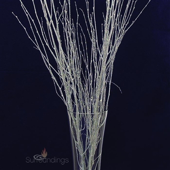 Glittered birch branches